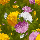 Excellent seamless pattern with chrysanthemum Royalty Free Stock Images