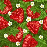 Excellent seamless pattern with strawberry. Excellent seamless pattern with with strawberry and leaves on green background Royalty Free Stock Photo
