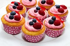 Excellent sweet muffin with fruit Royalty Free Stock Photography