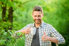 Excellent taste. Enjoy hot beverage. Natural drink. Healthy lifestyle. I prefer green tea. Refreshing drink. Man bearded royalty free stock photos