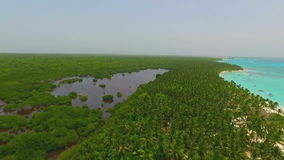 Excellent view from the quadrocopters the island. In the middle of the ocean with a lot of palm trees and pure white sandy beach stock footage