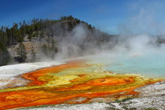 Excelsior Geyser Run-off, Midway Geyser Basin, Yellowstone National Park, Wyoming. Colourful algae thrive in the hot waters flowing out of Excelsior Geyser in stock photography