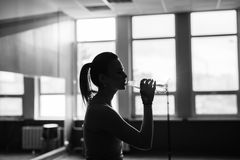excercising和喝水的健身运动的女孩剪影 库存图片