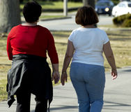 Excercising. Two overweight women walking together in the park Royalty Free Stock Images