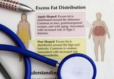 Excess fat distribution. Doctors' desk showing stethoscope, pen lying on an excess fat distribution chart royalty free stock image