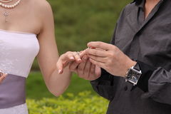 Exchange wedding rings Royalty Free Stock Photography