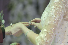 Exchange wedding rings. The bride  to the groom exchange wedding rings Royalty Free Stock Image