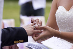 The Exchange Of Wedding Rings Royalty Free Stock Images