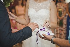 The exchange of wedding rings 7658. Stock Images