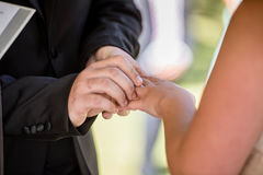 Exchanging Rings Stock Photography