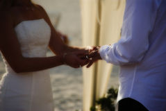 Exchanging vows. A married couple symbolising their love with their rings Stock Image