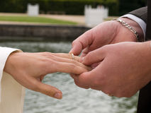 Exchanging wedding rings Royalty Free Stock Photography