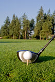 Excitador do golfe e esfera - vertical Fotos de Stock