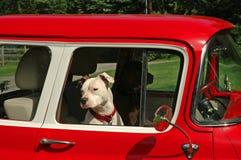 Excitador e passageiro Fotografia de Stock Royalty Free