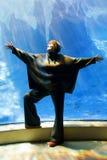 Excitation dans l'aquarium photographie stock libre de droits