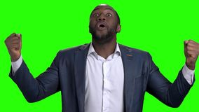 Excited Afro American businessman with clenched fists. Joyful afro american entrepreneur celebrating victory on Alpha Channel background, slow motion stock video