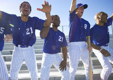 Excited baseball team jumping up from bench in stand during competitive baseball game, cheering, front view (backlit) Royalty Free Stock Photography