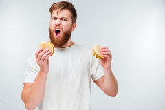 Excited bearded man greedily eating hamburgers Stock Photos