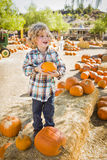 Excited Boy Holding His Pumpkin at a Pumpkin Patch stock image