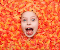 Excited boy in sweets Royalty Free Stock Image