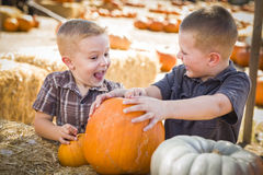 Excited Boys at the Pumpkin Patch Talking and Having Fun. Two Boys at the Pumpkin Patch Talking About Their Pumpkins and Having Fun on a Fall Day Royalty Free Stock Photo