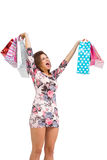 Excited brunette holding up shopping bags Royalty Free Stock Photography