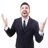Excited businessman celebration success on white background Royalty Free Stock Photo