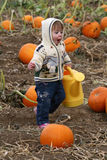 Excited Child Running in Pumpkin Patch Stock Image