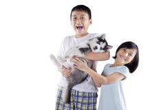 Excited children holding siberian husky puppy Royalty Free Stock Photography