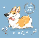 Excited Corgi Dog Run Tongue Out Vector Poster. Happy Fox Pet Character Walk Outdoor in Flowers. Little Funny Welsh. Doggy Series on Blue Background Flat vector illustration