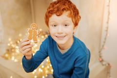 Excited curly haired kid showing gingerbread man. Check this out. Top view on an extremely happy boy grinning broadly while looking into the camera and showing a Stock Images