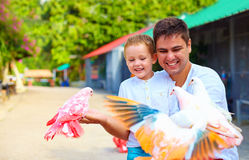 Excited family feeding colorful pigeons on animal farm Royalty Free Stock Photos