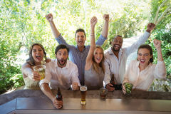 Excited friends at counter. In restaurant Royalty Free Stock Image