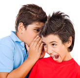 Excited gossip boys. Isolated on white background, best friends whispering about some secret, brunette kid listening news with open mouth, children talking and royalty free stock images