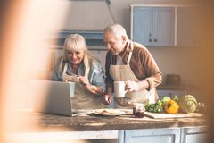 Excited mature couple reading recipe on computer. Lets try this recipe. Joyful old women is pointing finger at laptop screen and smiling. Man is holding a cup of Royalty Free Stock Photos