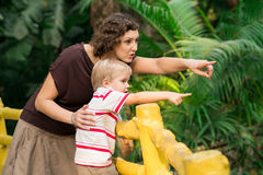 Do you see that?!. Excited mom and son pointing something in the zoo royalty free stock photo