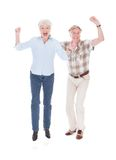 Excited Senior Couple Royalty Free Stock Images