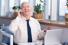 Excited senior executive calling his business partner. I can agree to that. Emotional handsome elderly man talking with his colleague on the phone while sitting Royalty Free Stock Images
