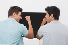 Excited soccer fans watching tv. Rear view of two excited soccer fans watching tv Royalty Free Stock Image