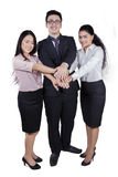 Excited teamwork joining hands in studio Stock Images