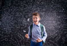 Excited and victorious boy against blackboard with mathematical Stock Photo