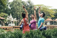 Excited yogis Стоковые Изображения