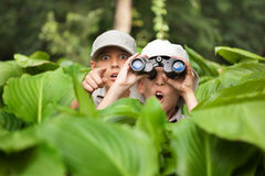 Excited young campers hiding in grass looking through binoculars Royalty Free Stock Images