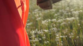 Woman`s hand raising the camera in a black case in a field in slow motion. Exciting closeup of a camera in a case raised by a woman in a red dress outdoors in a stock video