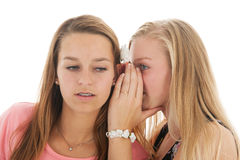 Exciting news. Teen girls are whispering gossip to each other Royalty Free Stock Photos