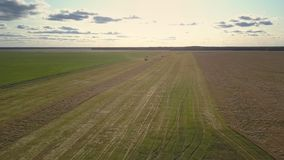 Upper view harvesters drive on field and gather ripe wheat. Exciting upper landscape harvesters drive on field and gather ripe wheat against forest on horizon in stock footage