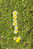 Exclamation mark of flower alphabet. Exclamation mark from complete flower alphabet royalty free stock image