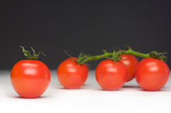 Excluded tomato. Lonely tomato i front of four bundled tomatos Stock Photo