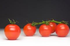 Excluded tomato Stock Photo