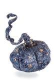 Exclusief met de hand gemaakt stuk speelgoed in de vorm van blauwe pompoen stock afbeelding